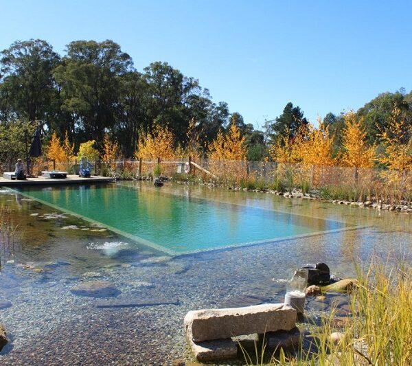 diseño de piscinas paisajista