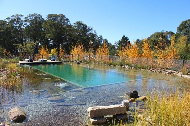 Dise o piscinas un jardin para mi for Diseno estructural de piscinas