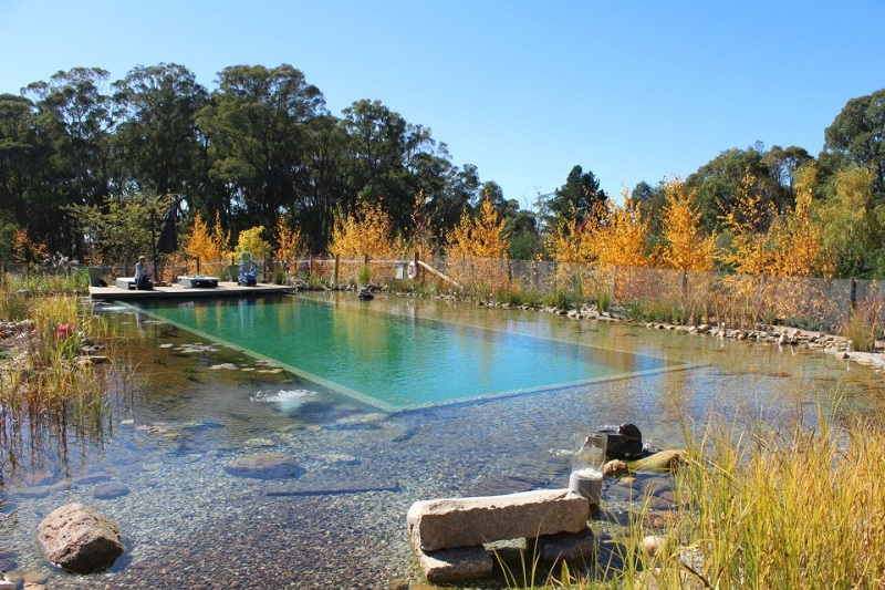 Dise o piscinas un jardin para mi for Construccion piscinas naturales