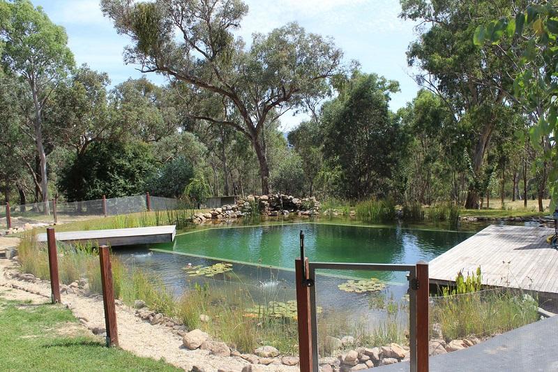 Piscinas naturales un jardin para mi for Natural swimming pools australia