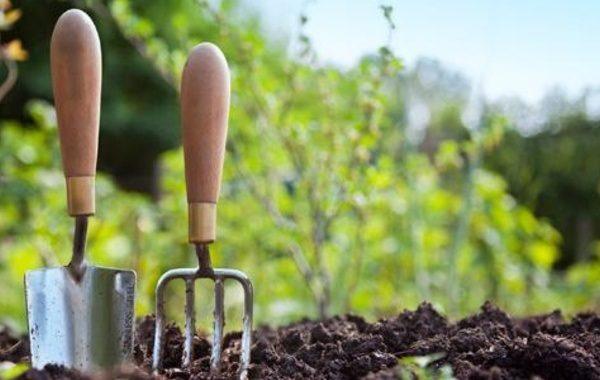 arreglo de jardines - Unjardinparami