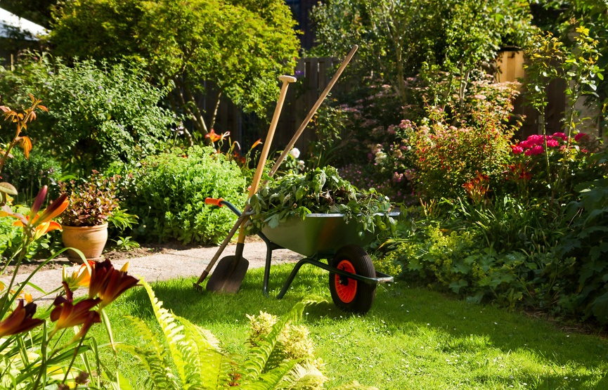 Mantenimiento de jardines - Unjardinparami