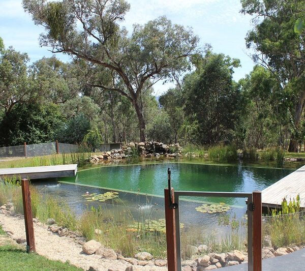 Mejores piscinas naturales