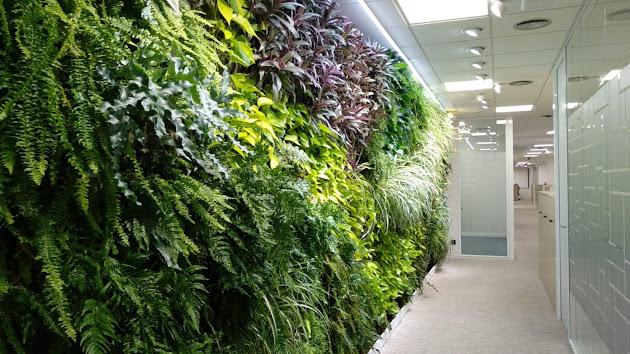 Diseño de jardines verticales. Tipos y ventajas
